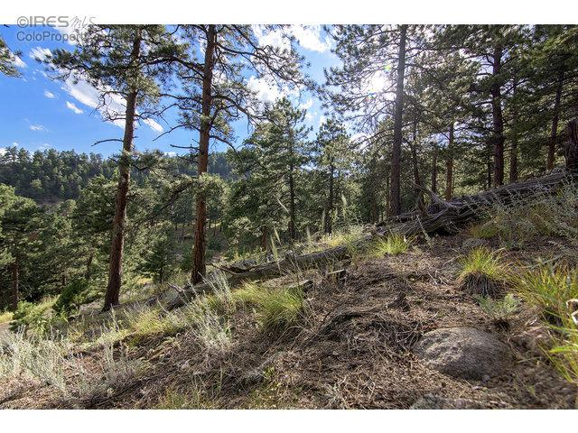 0 Cutter Ln, Boulder, CO 80302 (MLS #772849) :: 8z Real Estate