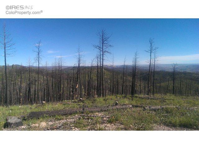3333 Whale Rock Rd, Bellvue, CO 80512 (MLS #794322) :: 8z Real Estate