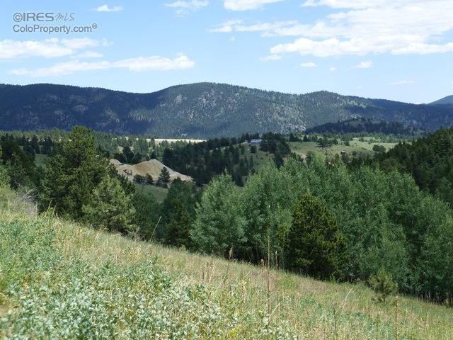 9 Wellington Mine Rd, Central City, CO 80427 (MLS #797127) :: 8z Real Estate