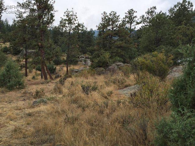175 Choctaw Rd, Lyons, CO 80540 (MLS #800971) :: 8z Real Estate