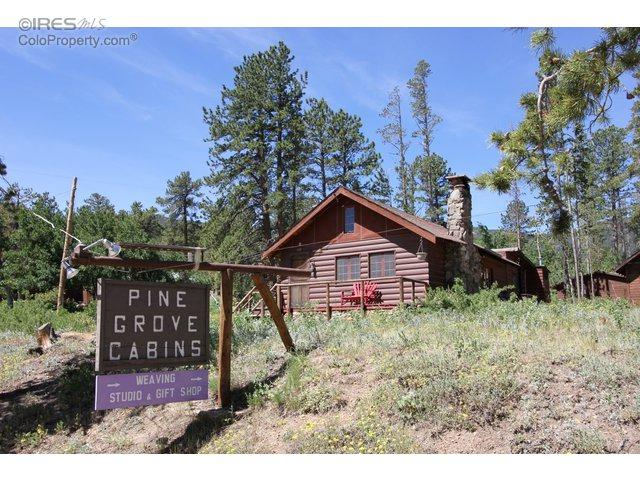 60 County Road 90, Allenspark, CO 80510 (MLS #801525) :: Tracy's Team