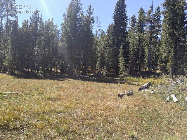 Forest Service Road 169, Red Feather Lakes, CO 80545 (MLS #802540) :: 8z Real Estate