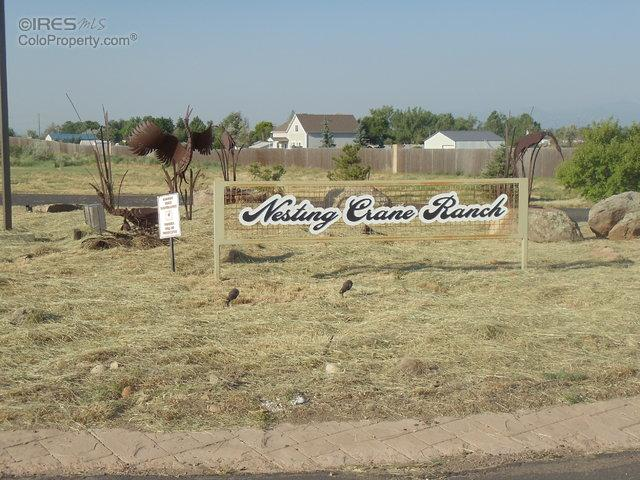 529 Nesting Crane Ln, Longmont, CO 80504 (MLS #810007) :: 8z Real Estate
