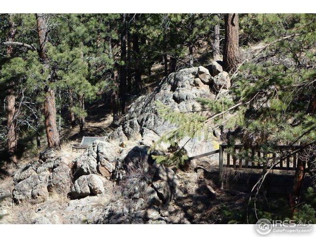 0 Bow Mountain Rd, Boulder, CO 80302 (MLS #811898) :: 8z Real Estate