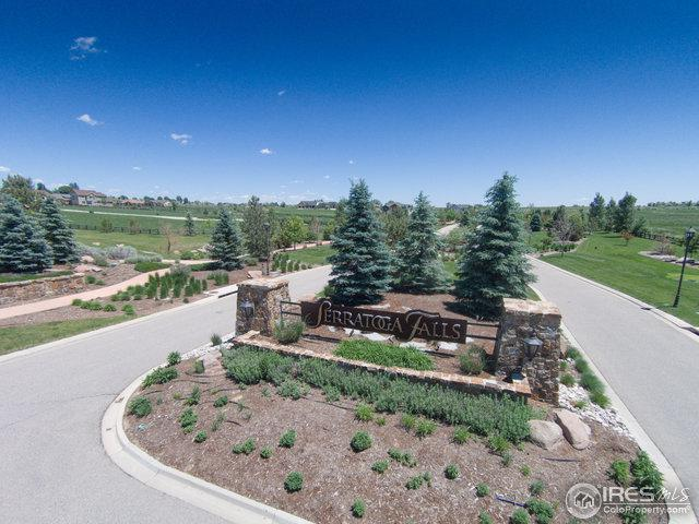 1006 Waterfall St, Timnath, CO 80547 (MLS #812410) :: 8z Real Estate