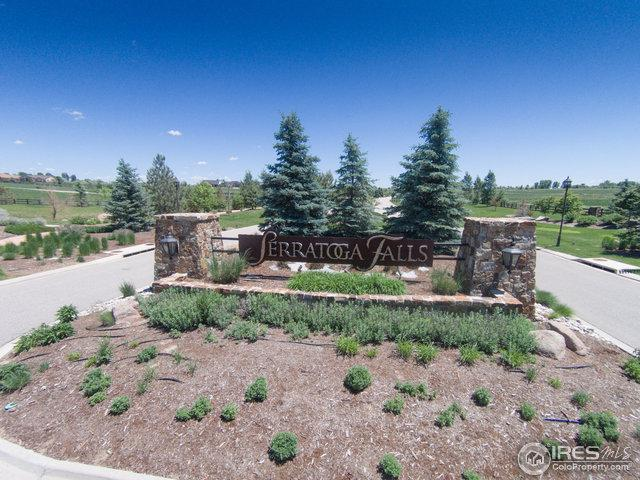 1163 Waterfall St, Timnath, CO 80547 (MLS #812431) :: 8z Real Estate