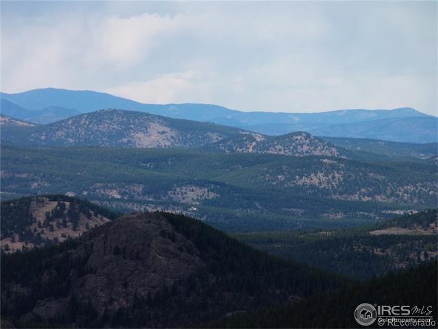 7 Bull Moose Run, Black Hawk, CO 80422 (MLS #812738) :: 8z Real Estate