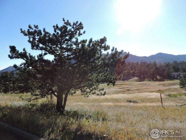 0 Grey Fox Dr, Estes Park, CO 80517 (MLS #812746) :: 8z Real Estate