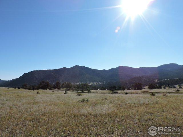 0 Grey Fox Dr, Estes Park, CO 80517 (MLS #812747) :: 8z Real Estate