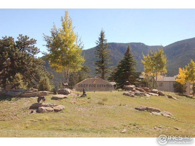0 Green Pine Ct #3, Estes Park, CO 80517 (MLS #812752) :: 8z Real Estate