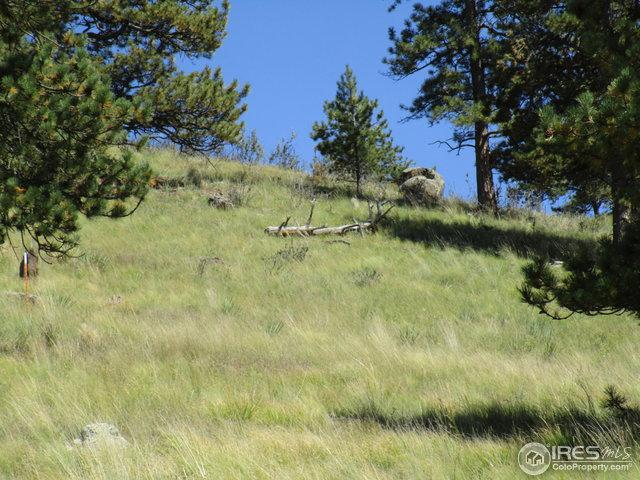 96 Westpoint Cir, Florissant, CO 80816 (MLS #813607) :: 8z Real Estate