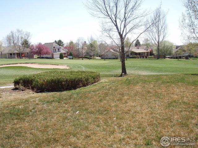1433 Glen Eagle Ct, Fort Collins, CO 80525 (MLS #815360) :: 8z Real Estate