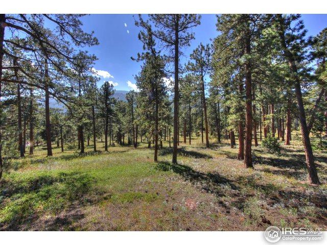 283 Ski Rd, Allenspark, CO 80510 (MLS #815554) :: 8z Real Estate
