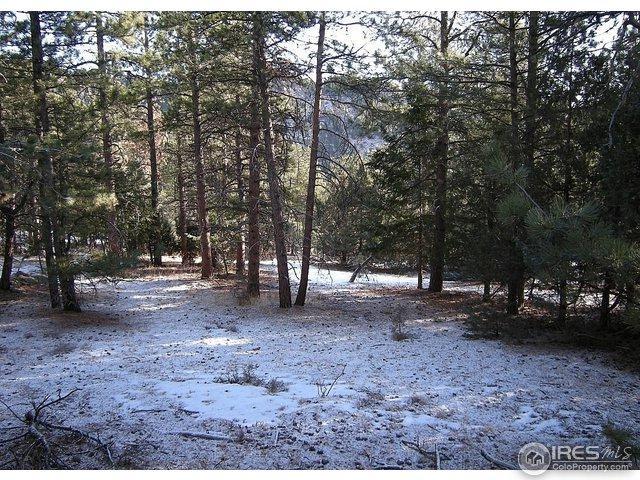 0 Elk Dr, Lyons, CO 80540 (MLS #815827) :: 8z Real Estate