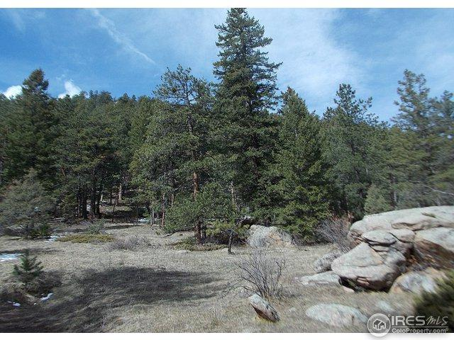 0 Cedar Dr, Lyons, CO 80540 (#816300) :: The Peak Properties Group