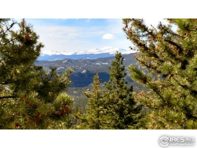 2025 Elkridge Rd, Red Feather Lakes, CO 80545 (MLS #816358) :: 8z Real Estate