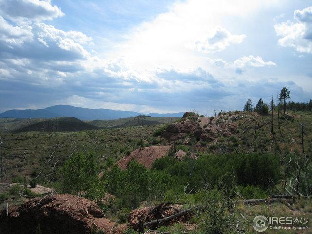 20000 Raleigh Peak Rd, Pine, CO 80470 (MLS #816782) :: 8z Real Estate