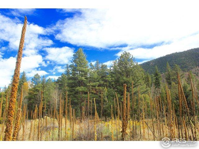 1 Tbd Poudre Canyon Hwy, Bellvue, CO 80512 (MLS #816846) :: 8z Real Estate