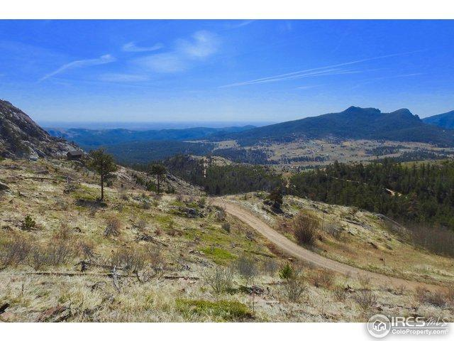233 Jug Ct, Drake, CO 80515 (MLS #816951) :: 8z Real Estate
