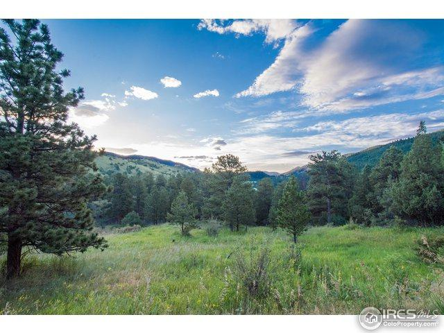 220 Solitude Ct, Glen Haven, CO 80532 (MLS #817270) :: 8z Real Estate