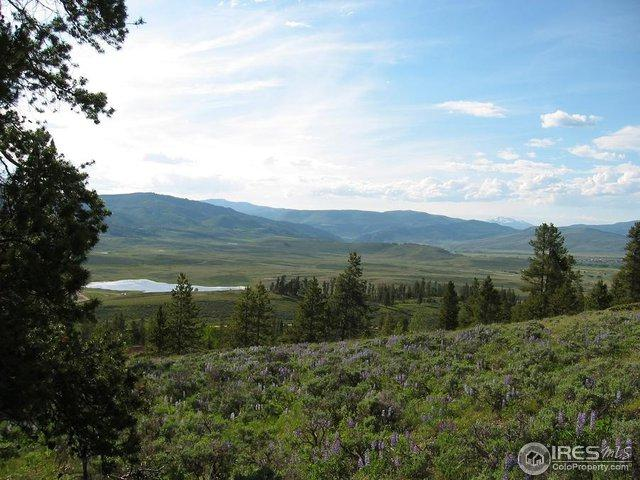 1464 County Road 8952, Granby, CO 80446 (MLS #817591) :: 8z Real Estate
