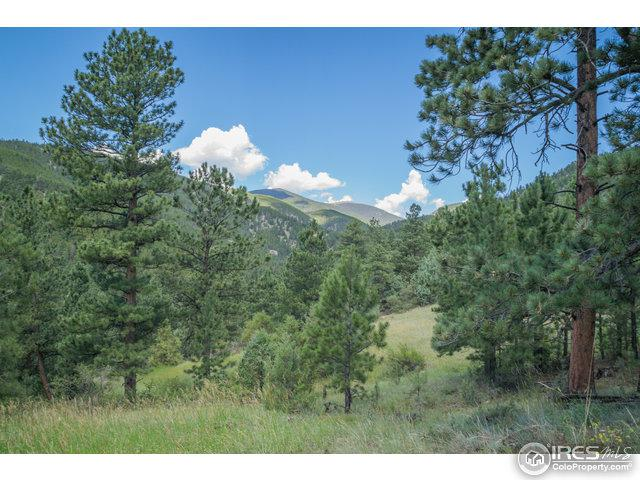 0 Miller Fork Rd, Glen Haven, CO 80532 (MLS #818510) :: 8z Real Estate