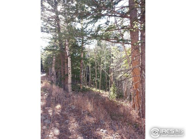 0 Monument Gulch Way, Bellvue, CO 80512 (MLS #818607) :: 8z Real Estate