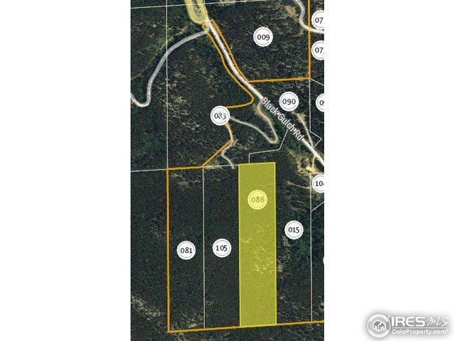 0 Black Gulch Rd, Golden, CO 80403 (MLS #818871) :: 8z Real Estate