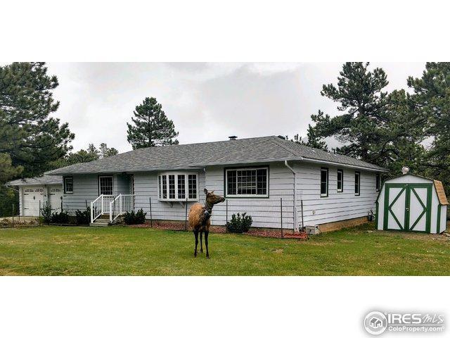 450 Far View Ln, Estes Park, CO 80517 (MLS #818900) :: 8z Real Estate