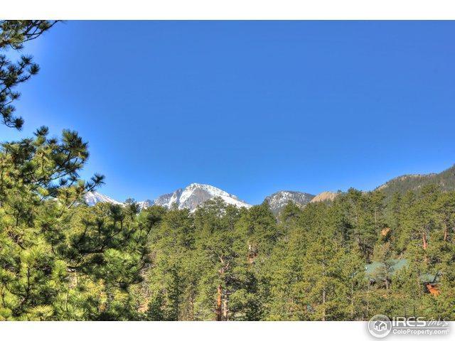 3198 Rockwood Ln, Estes Park, CO 80517 (MLS #819105) :: 8z Real Estate