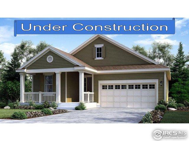 2803 E 161st Pl, Thornton, CO 80602 (MLS #819729) :: 8z Real Estate