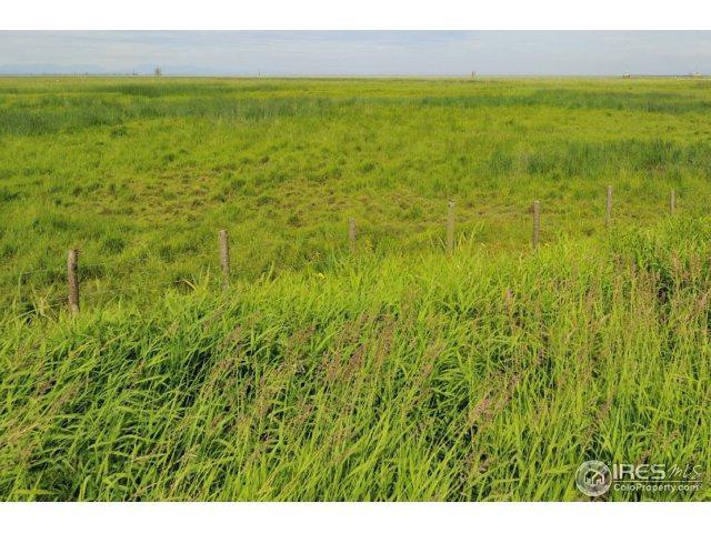 15333 Monnahan Rd, Byers, CO 80103 (MLS #819983) :: 8z Real Estate