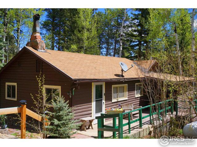 147 Ski Rd, Allenspark, CO 80510 (MLS #820050) :: 8z Real Estate