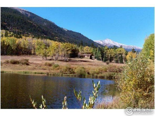 2182 Silver Valley Rd, Silver Plume, CO 80476 (MLS #820208) :: 8z Real Estate
