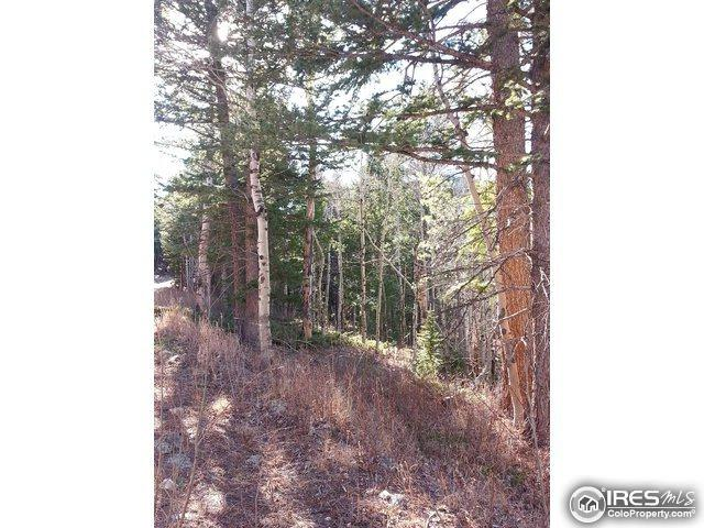 48 Monument Gulch Way, Bellvue, CO 80512 (MLS #820709) :: 8z Real Estate