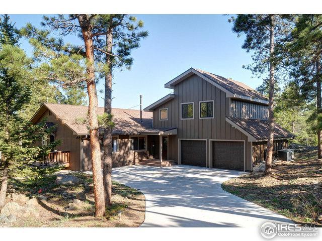 62 Bridger Trl, Ward, CO 80481 (MLS #820845) :: 8z Real Estate