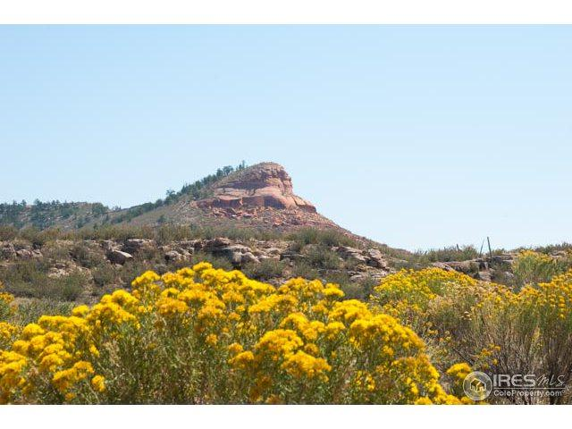 0 Red Mountain Rd, Livermore, CO 80536 (MLS #820954) :: Kittle Real Estate