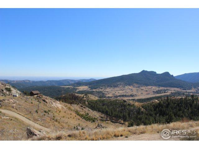 0 Jug Ct, Drake, CO 80515 (MLS #821201) :: 8z Real Estate