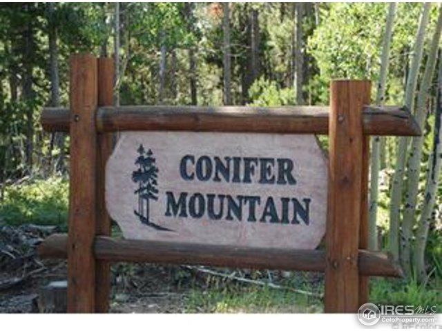 11184 Thomas Dr, Conifer, CO 80433 (MLS #821575) :: 8z Real Estate