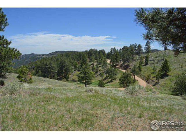 0 Sunshine Canyon Dr, Boulder, CO 80302 (MLS #821581) :: 8z Real Estate