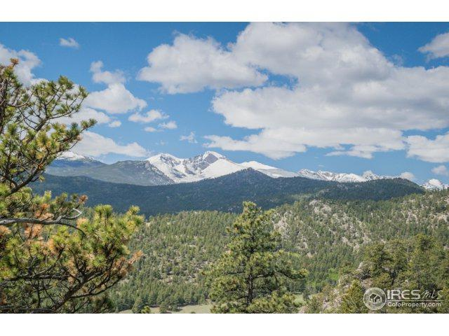 0 Pine Tree Dr Unassigned, Estes Park, CO 80517 (MLS #821646) :: 8z Real Estate