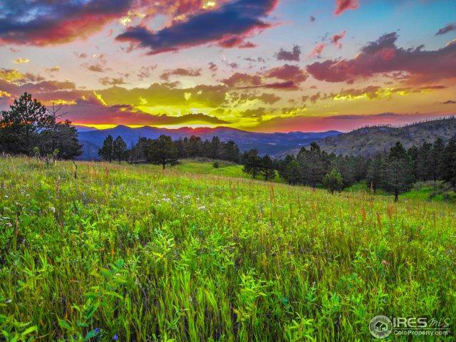 17300 N County Road 25, Loveland, CO 80538 (MLS #821879) :: 8z Real Estate