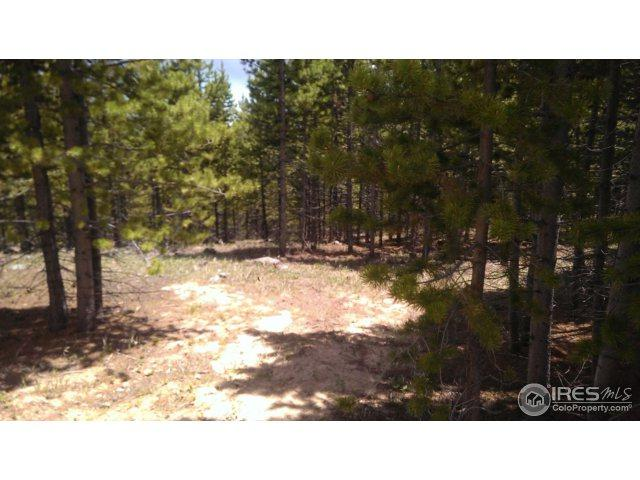 321 Mosquito Dr, Red Feather Lakes, CO 80545 (MLS #822193) :: 8z Real Estate