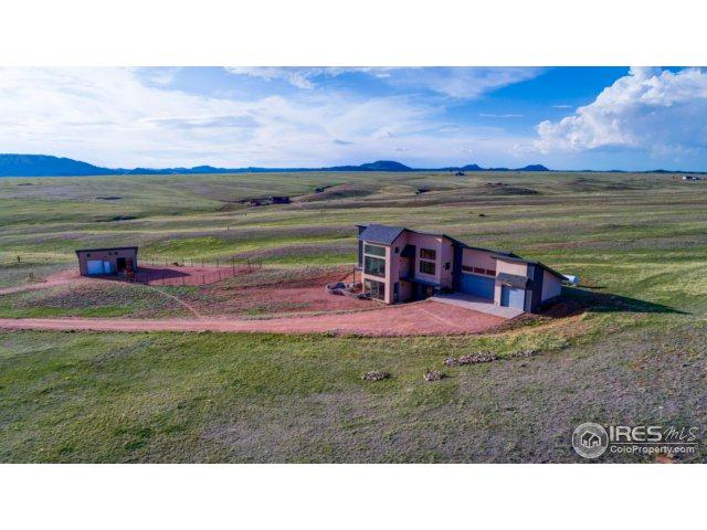 2176 Great Twins Rd, Livermore, CO 80536 (MLS #822721) :: Kittle Real Estate