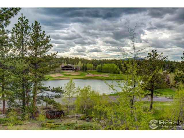 5 Fox Acres Dr, Red Feather Lakes, CO 80545 (MLS #822725) :: 8z Real Estate