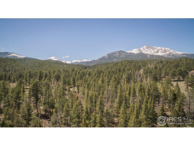 12905 Peak To Peak Hwy, Allenspark, CO 80510 (MLS #822776) :: 8z Real Estate