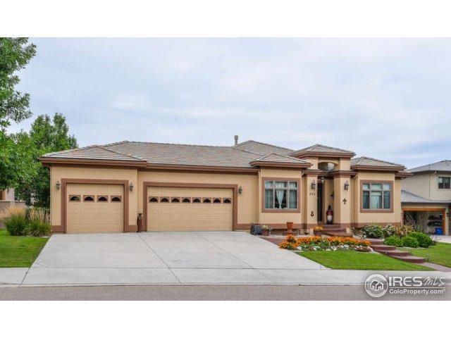 895 Deer Meadow Dr, Loveland, CO 80537 (MLS #823739) :: 8z Real Estate