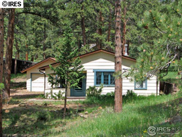 810 Larkspur Rd, Estes Park, CO 80517 (MLS #823753) :: 8z Real Estate