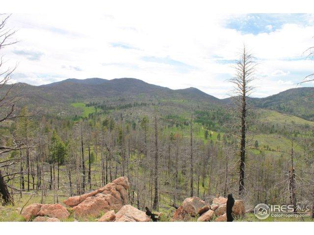 0 Old Flowers Rd, Bellvue, CO 80512 (MLS #823821) :: 8z Real Estate