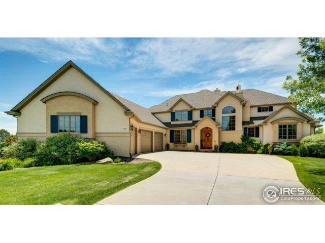 7513 Blue Water Ct, Fort Collins, CO 80525 (MLS #823915) :: 8z Real Estate
